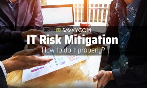 IT Risk Mitigation - How to do it properly?