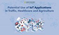Potential Use of IoT Applications in Traffic, Healthcare and Agriculture
