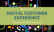 DCX 101 - Digital Customer Experience Segmented For B2B Customers