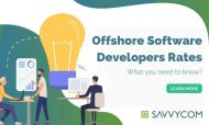Offshore Software Developers Rates in 2021