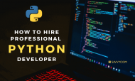 How To Hire Professional Python Developer? Benefits, Hourly Rate