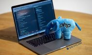 How To Hire Professional PHP Developer? Benefits, Hourly Rate